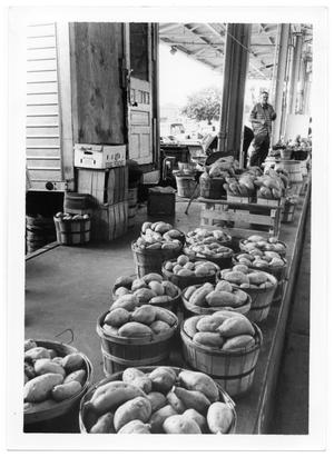Primary view of object titled '[Produce Display]'.