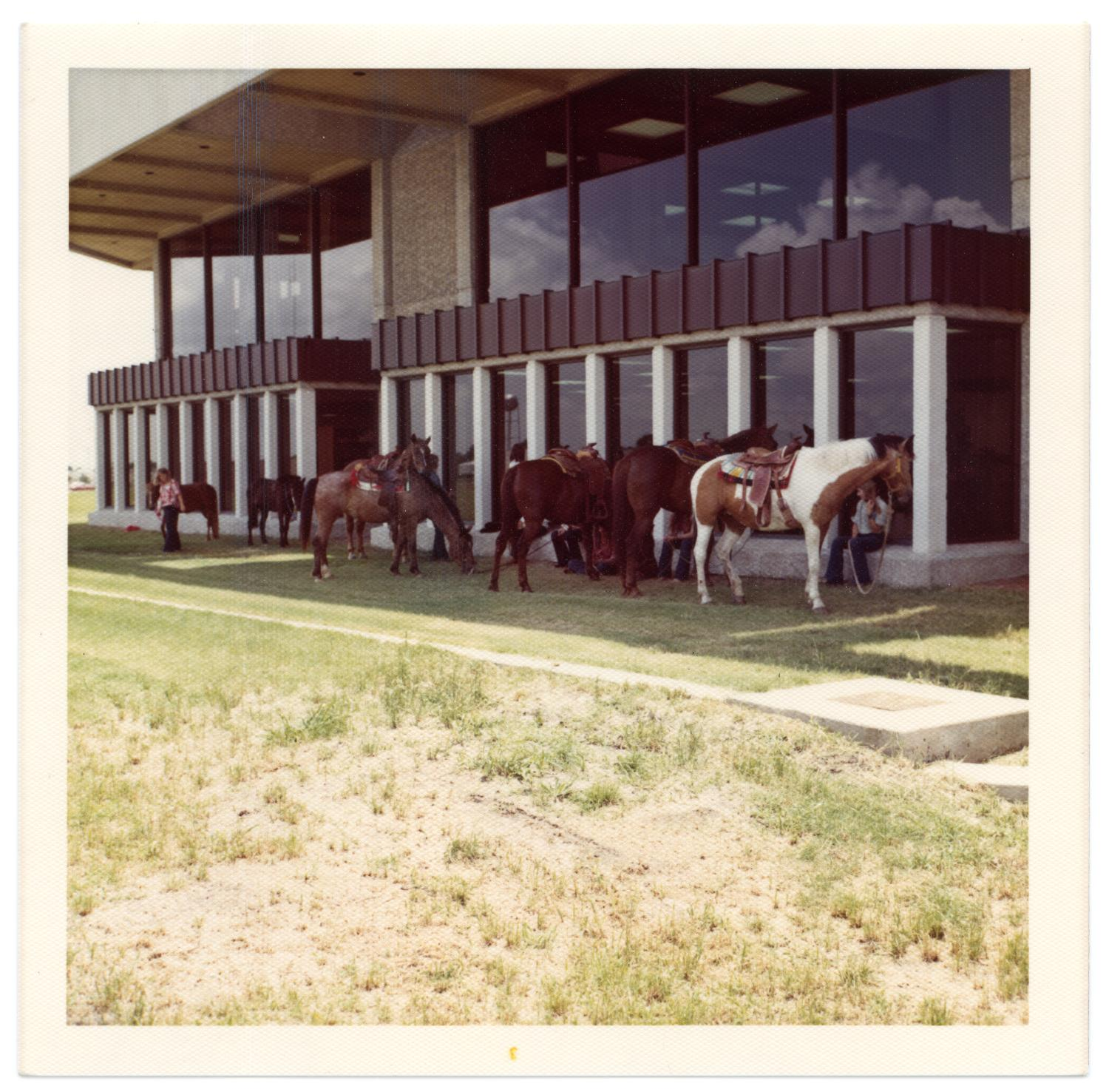 Richardson Centennial Celebration, Photograph of a line of horses in tack at the Centennial celebration. They are standing beside Richardson Public Library. A group of people are sitting on the window sills of the building. One person in the background is standing.,