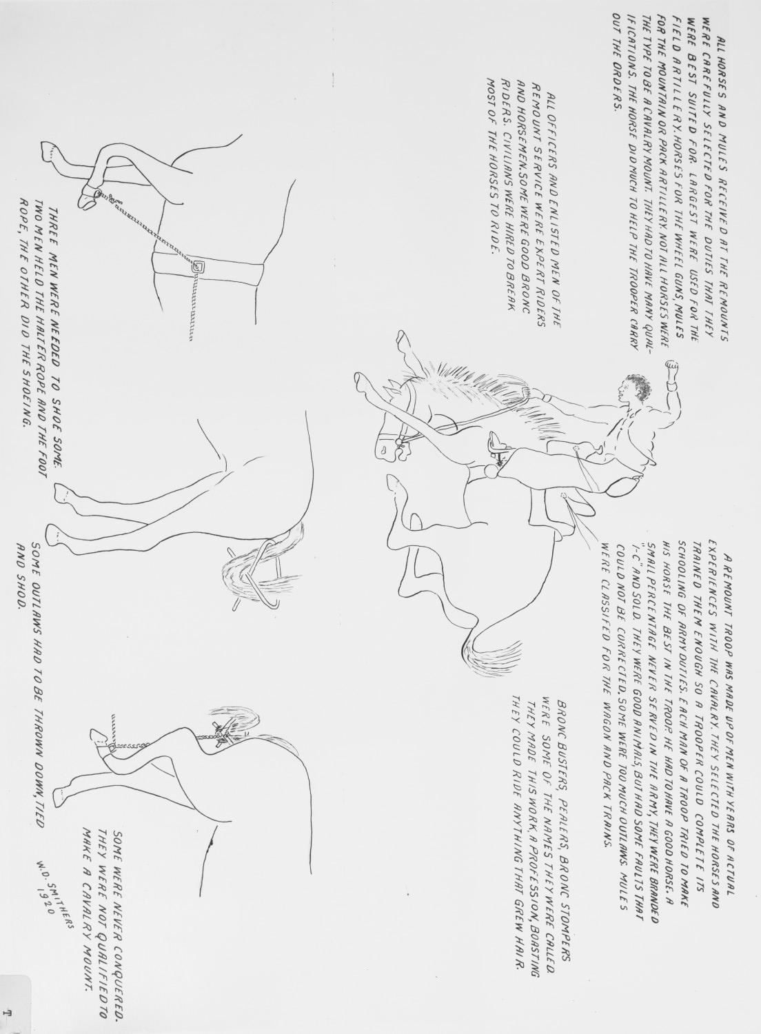 Uses of horses and mules in the U.S. Cavalry. Picture                                                                                                      [Sequence #]: 1 of 1