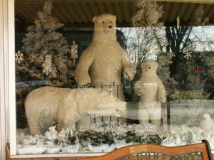 Primary view of object titled '[Stuffed Polar Bears in a Window]'.
