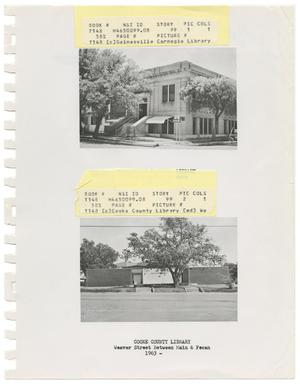 Primary view of object titled '[Two Cooke County Library Branches]'.