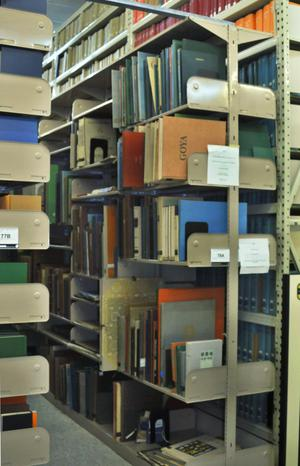 Primary view of object titled '[Bookshelves at Library Annex]'.
