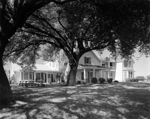 Primary view of [Two-Story House and Large Tree]