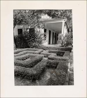 Primary view of object titled '[Gardens at the French Legation]'.