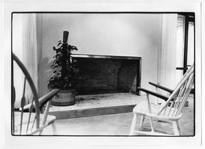 Primary view of object titled 'Fire Place in the Denton Public Library'.