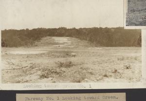 Primary view of object titled 'Fairway No. 1 looking toward green'.