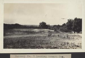 Primary view of object titled 'Fairway No. 7 Looking Toward Tee'.