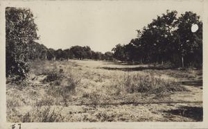 Primary view of object titled '[Municipal Golf Course fairway number seven]'.