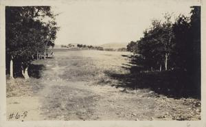 Primary view of object titled '[Municipal Golf Course fairway number six]'.