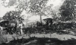 Primary view of object titled '[Carriages at Barton Creek]'.