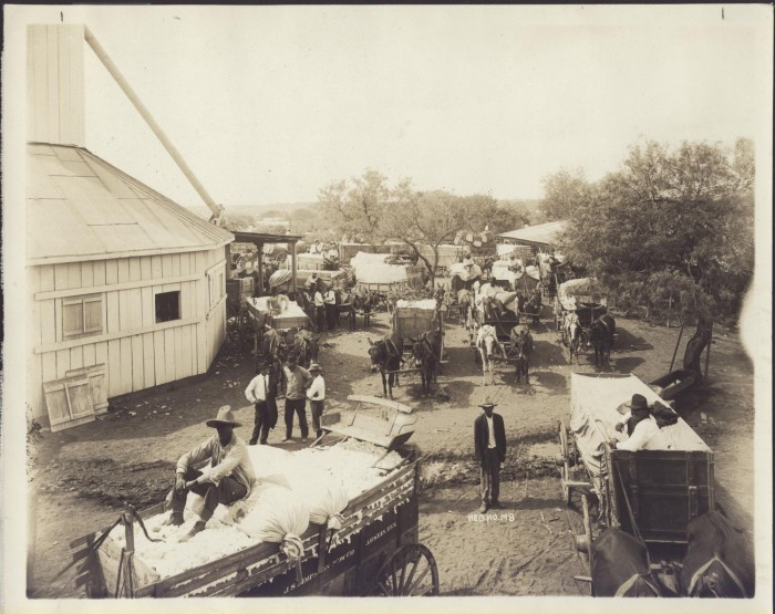 a history of the development of the cotton gin A group dedicated to the study of texas cotton history lots of old gin buildings removal of the log jam in the 1920s caused the development of an enormous.