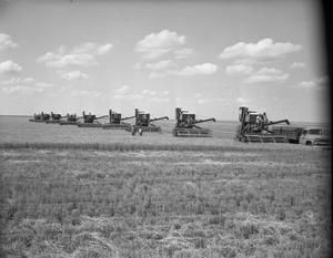 Primary view of object titled '[Wheat Harvest at Phillip Miller's Farm]'.