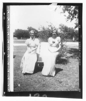 Two Girls in Gowns