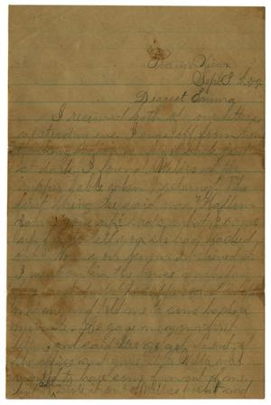 Primary view of object titled '[Letter from John C. Brewer to Emma Davis, September 3, 1879]'.