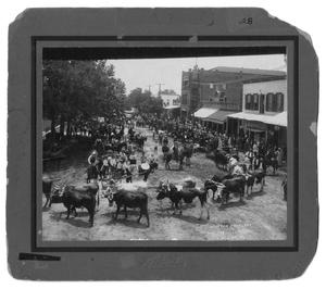 Primary view of object titled 'Houston Hustlers in Hallettsville, Texas'.