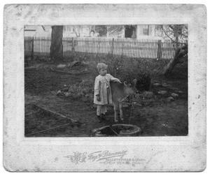 Primary view of object titled '[Portrait of an Unknown Boy With Calf]'.