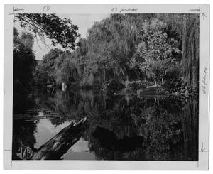Primary view of object titled '[Turtle Creek Park]'.