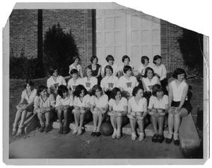 Primary view of object titled '[Girls' Volleyball Teams]'.
