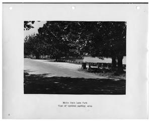 Primary view of object titled '[Photograph of White Rock Lake Parking Area]'.