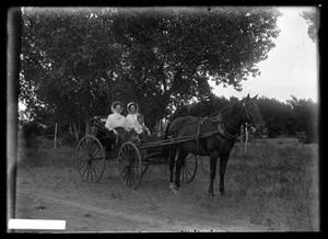 Primary view of object titled '[Three People in Buggy]'.