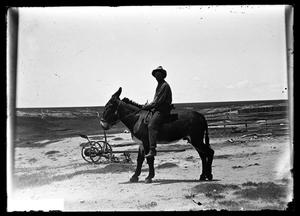 Primary view of object titled '[Mule and Rider]'.