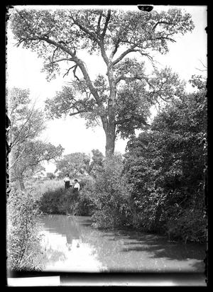 Primary view of object titled '[Women by Creek]'.