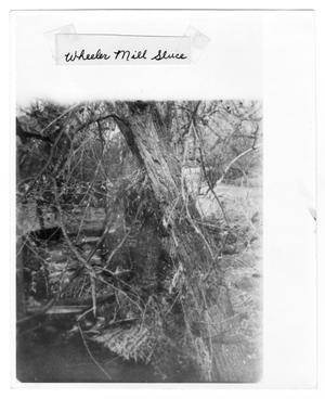 Primary view of object titled '[Wheeler Mill Sluice]'.