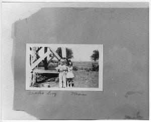 Primary view of object titled 'Charles Levy and Maxine Elmore'.