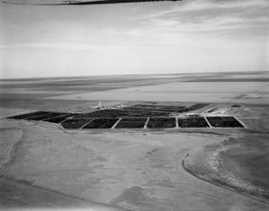 [Aerial Photograph of the Pitman-Easley Feed Yard]