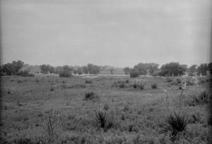 Primary view of object titled '[Tierra Blanca Creek]'.