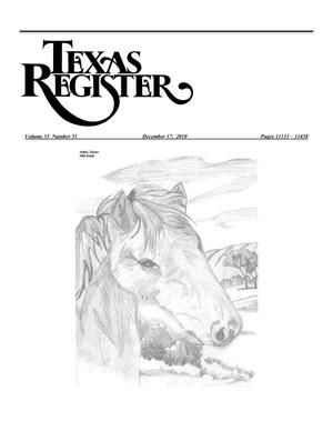 Primary view of object titled 'Texas Register, Volume 35, Number 51, Pages 11133-11438, December 17, 2010'.