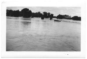 Primary view of object titled '[Red River Flood in Gainesville, Texas]'.