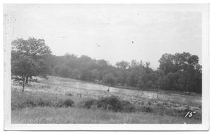 Primary view of object titled '[Looking Northwest of Little Elm Creek]'.