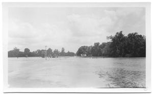 Primary view of object titled '[North of Denton Creek, Looking South]'.
