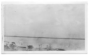 Primary view of object titled '[Flood Scenes at Lake Dallas]'.