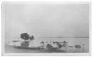 Primary view of object titled '[Flood Scene at Lake Dallas]'.