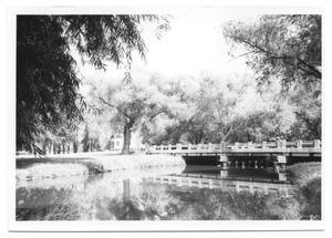 Primary view of object titled '[Bridge Over Water]'.