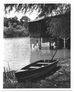 Primary view of object titled '[Boat and Lake House]'.
