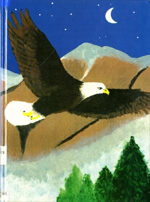 Primary view of object titled 'The Eagle, Yearbook of Stephen F. Austin High School, 1993'.