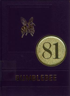 Primary view of object titled 'The Bumblebee, Yearbook of Lincoln High School, 1981'.