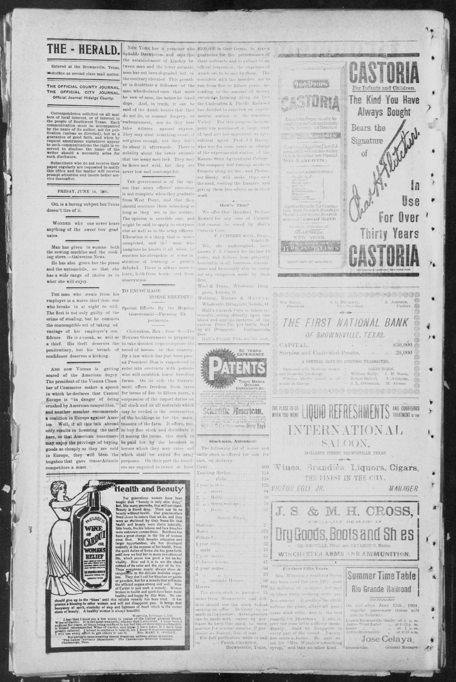 Brownsville Daily Herald (Brownsville, Tex.), Vol. NINE, No. 250, Ed. 1, Friday, June 14, 1901                                                                                                      [Sequence #]: 2 of 4