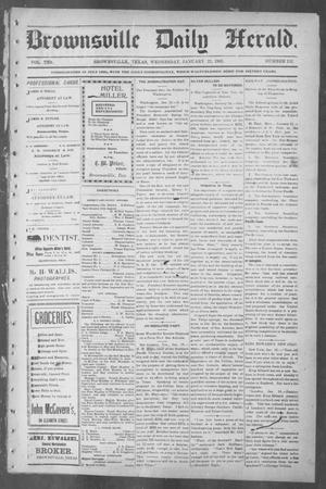 Primary view of object titled 'Brownsville Daily Herald (Brownsville, Tex.), Vol. 10, No. 152, Ed. 1, Wednesday, January 22, 1902'.