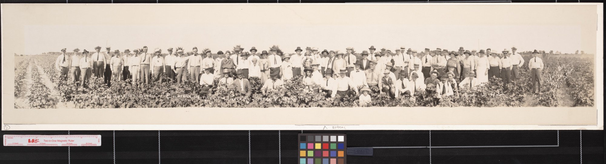 Southwestern Land Co. excursion party in the Lower Rio Grande Valley, Texas cotton field                                                                                                      [Sequence #]: 1 of 1