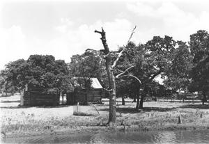 Primary view of object titled 'Log Home in Colleyville'.