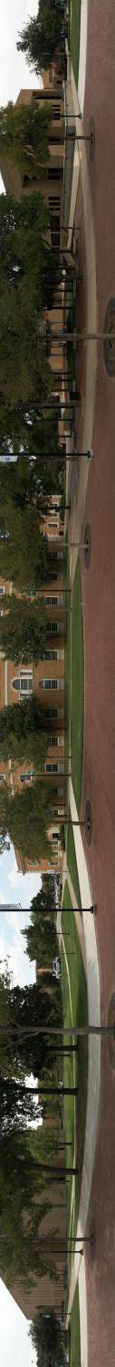 [Betterlight Panoramic of the University of North Texas Library Mall]                                                                                                      [Sequence #]: 1 of 1