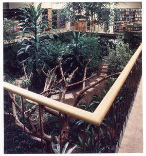 Primary view of object titled '[Atrium at the Emily Fowler Library]'.