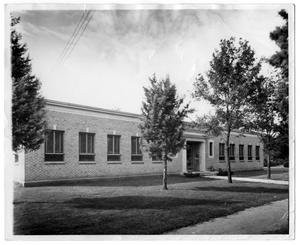 Primary view of object titled 'Front Entrance to the Denton Public Library'.
