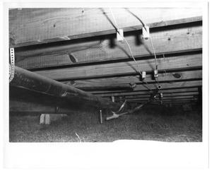 Primary view of object titled 'Underside of a House'.