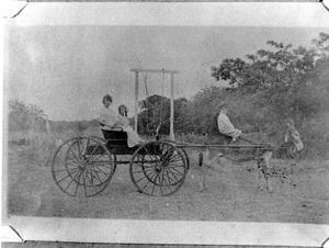 Primary view of object titled 'Lady and a Girl in a Carriage Drawn by a Donkey'.