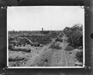 Primary view of object titled '[Clearing the field]'.